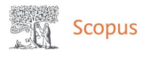 Scopus author profile